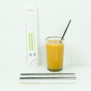 Stainless Steel Smoothie Straw Pack - 2 Straws & Brush