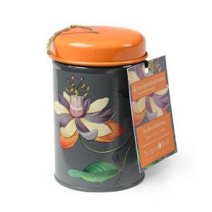 Burgon & Ball - Passiflora - Twine in a Tin